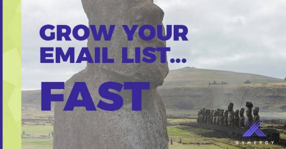 5 Ways to Grow Your Email List by 25% -  Fast