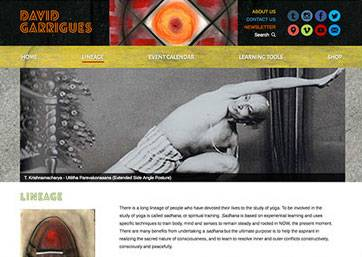 David Garrigues Website Wins 2 W3 Awards