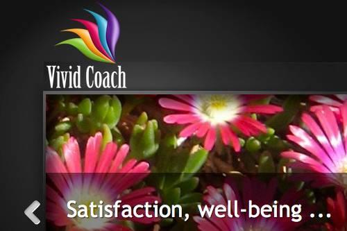 Vivid Coach