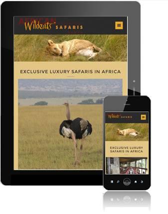 Wildcats African Safaris